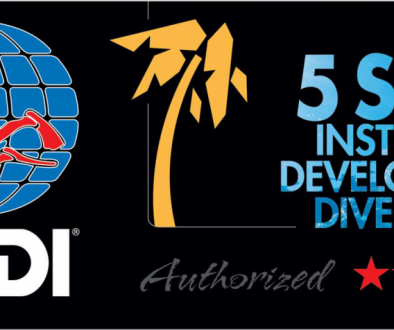 padi-5-star-instructor-development-resport